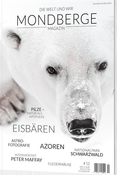 Cover des aktuellen Mondberge-Magazins »Eisbären«